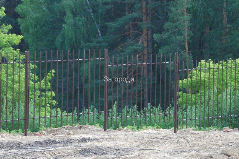 sam_0605