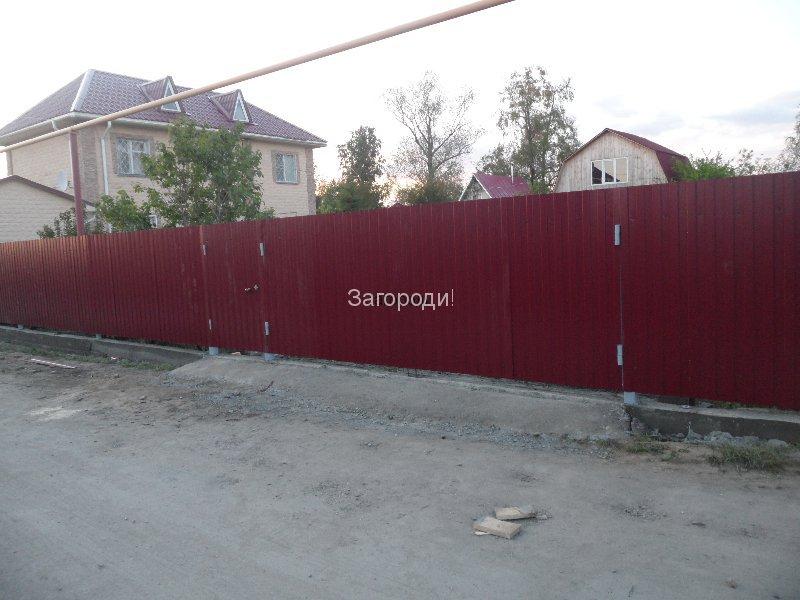 sam_8355